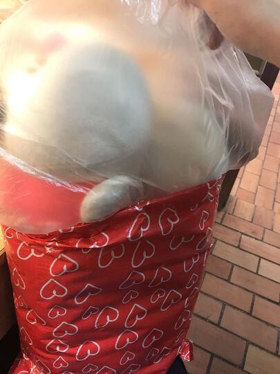 萌萌猪七彩毛毛虫双头彩虫靠垫抱枕儿童玩具公仔安抚毛绒玩具布娃娃 棕色双头毛毛虫 1.1米 晒单图