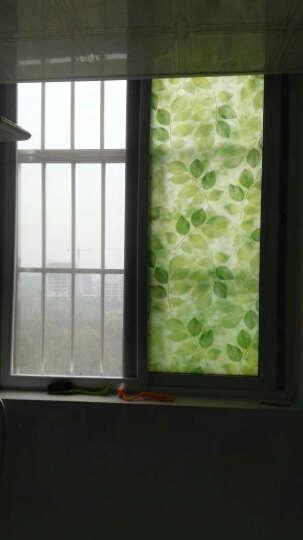 聚宝瓶 90cm窗花纸窗贴磨砂贴纸卫生间透光不透明浴室玻璃纸遮光窗户贴膜 青花瓷 晒单图