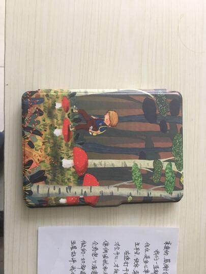 丁奇 亚马逊Kindle保护套499款/558款/958款 电子书休眠皮套 蘑菇男孩 Kindle 558版 晒单图