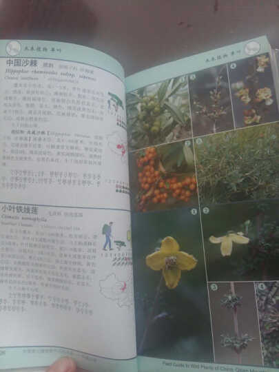 祁连山册-中国常见植物野外识别手册 晒单图