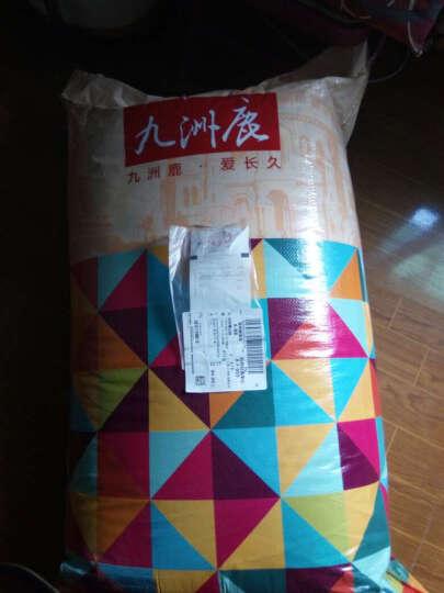 九洲鹿家纺 榻榻米可折叠学生加厚防滑印花床垫双人床褥垫子 大白兔-1.8x2m 晒单图