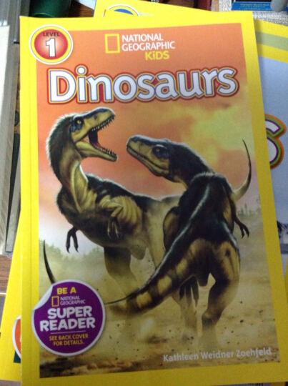 美国《国家地理》杂志-儿童科普分级阅读,第1级:恐龙 晒单图