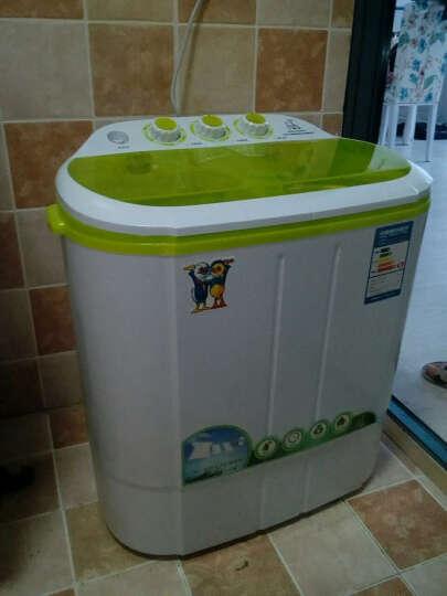 半自动波轮洗衣机--挺好用