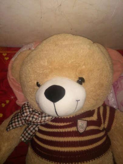 毛绒玩具熊 泰迪熊 可爱抱抱熊公仔狗熊布娃娃生日礼物女抱心熊大号熊猫公仔送女友 一生有你 60厘米 晒单图