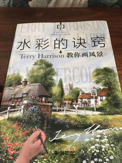 水彩的诀窍:Terry Harrison 教你画风景 晒单图