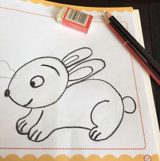我爱简笔画:可爱动物 晒单图