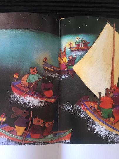 金羽毛 世界获奖绘本 金鱼王在哪里 晒单图
