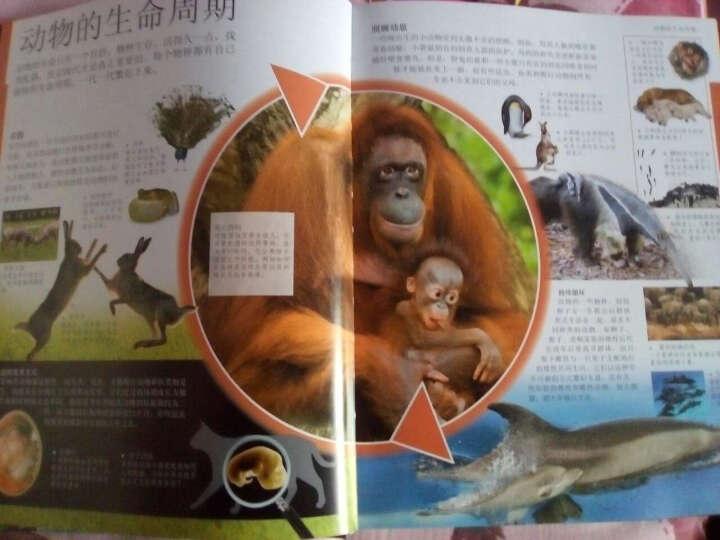 dk儿童动物百科全书(第2版)包装很好!