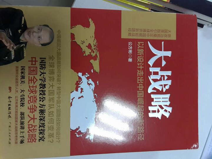 大战略 以新设计走出中国崛起的新路径 公方彬 经济 书籍 晒单图
