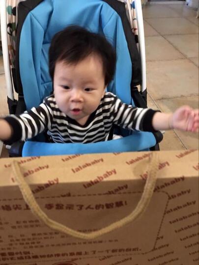 lalababy拉拉布书 婴儿宝宝布书带响纸立体撕不烂玩具0-1-3岁早教书启智套装 6本布书套装+BB棒 晒单图