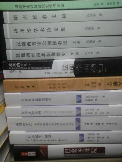 危机中的中国知识分子:寻求秩序与意义(1890-1911) [美] 张灏 97875117 晒单图