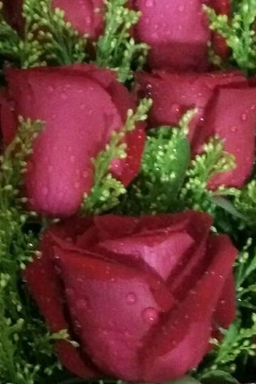 相思递鲜花速递同城红玫瑰花520送女友康乃馨百合礼盒花生日礼物表白求婚北京上海广州深圳全国花店送花 百年好合-5枝多头百合花束 晒单图