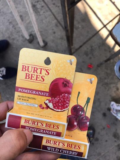 Burt's Bees 美国小蜜蜂唇膏保湿滋润护唇膏 樱桃 晒单图