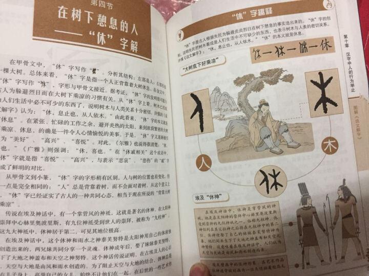 包邮图解说文解字全版全文注释 许慎 咬文嚼字 细说汉字的故事 古代汉语字典古文字字典画说汉 晒单图