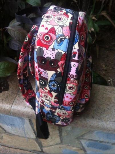 Epiphqny韩版双肩包女士复古帆布卡通猫头鹰学院风动物印花旅行女学生迷你包51024 抽象花拼 晒单图