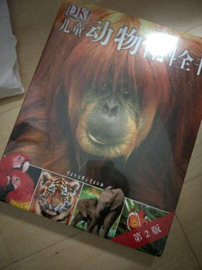 dk儿童动物百科全书(第2版)又厚又大内容又丰富的一