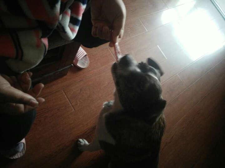 Bellfor零趣宠物零食狗狗训练食品肉类肉条肉丝 鸡肉绕皮卷800g 晒单图
