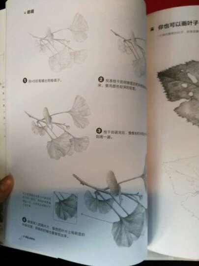 铅笔素描从入门到精通·植物篇 晒单图