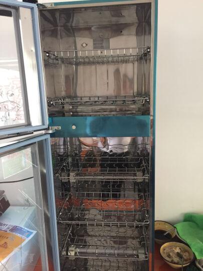 嘉仕利(JIASHILI) 高低温餐具消毒柜 双门大容量家用商用台式消毒碗柜立式迷你小型 E51 198L高1.220米 红色款 晒单图
