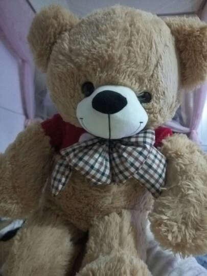 泰迪熊公仔毛绒玩具熊猫公仔抱抱熊美国大熊大号布娃娃女孩生日情人节礼物 浅棕美国大熊 1.3米 晒单图