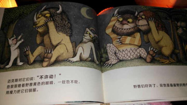 《野兽国》莫里斯·桑达克 晒单图