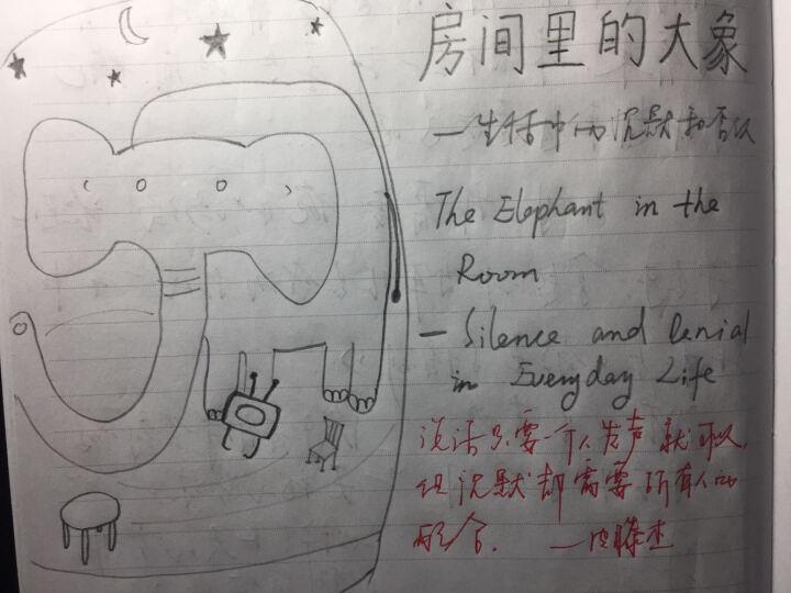 房间里的大象:生活中的沉默和否认 晒单图