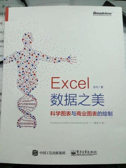 包邮 Excel 数据之美:科学图表与商业图表的绘制(全彩) 晒单图