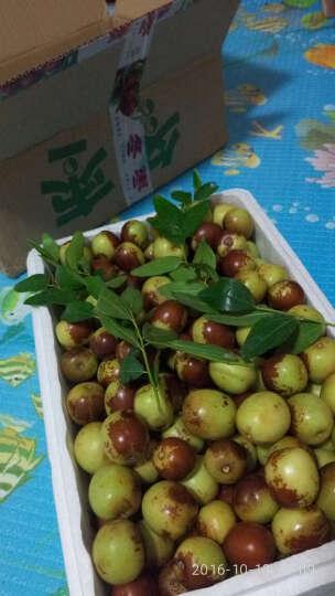 金玉寿 陕西大荔冬枣1000g 新鲜水果脆甜枣子 晒单图