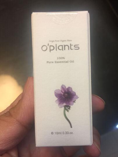 澳柏兰姿(OPlants) 活机保加利亚玫瑰精油(10%) 10ml 奥图玫瑰 澳洲品质 晒单图