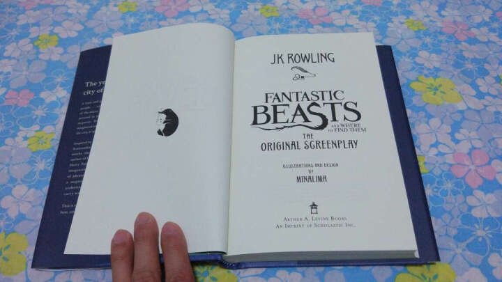 Fantastic Beasts and Where to Find Them: Fashion Sketchbook 神奇动物在哪里:时尚速写簿 英文原版 晒单图