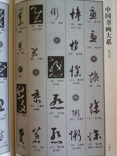 图文珍藏版:中国草书大字典(平装) 晒单图
