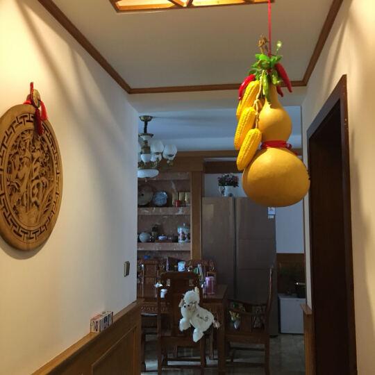 千特 仿真水果蔬菜串 客厅装饰 影楼摄影装饰 青梨 晒单图