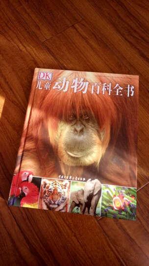 dk儿童动物百科全书(第2版)dk这套书太好了