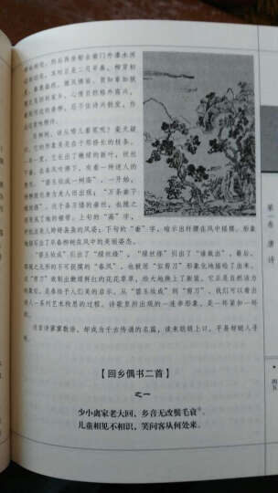 中国诗歌鉴赏书籍唐诗宋词元曲诗歌词曲唐诗三百首 晒单图