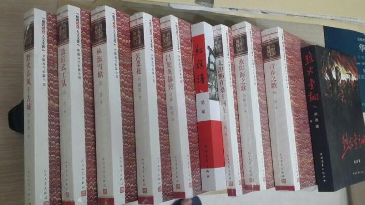 朝内166人文文库·中国当代长篇小说:太阳照在桑干河上 晒单图