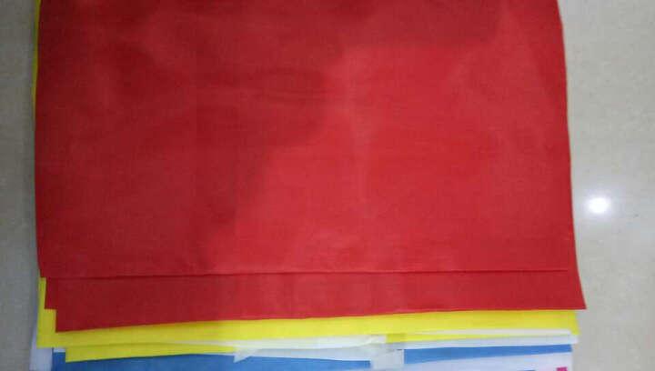 彩旗  定做印LOGO 广告旗 活动彩旗1号2号3号4号 彩旗 彩色旗子 旗帜 刀旗 飘旗 90*140 晒单图