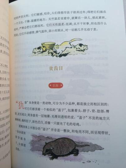 自然史·动物王国 晒单图