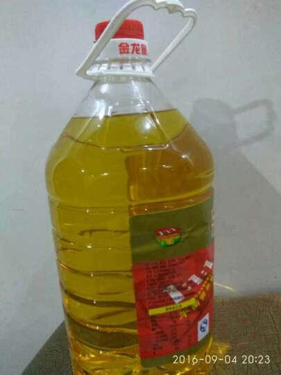 金龙鱼调和油5l桶装大桶食用油食用调和油植物油粮油