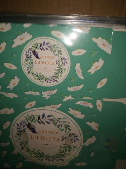 烤乐仕烘焙包装 曲奇饼干盒点心包装盒 手提西点盒蛋糕盒 永远的快乐25*25*15cm 晒单图