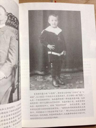 希姆莱兄弟:一个德国家庭的故事 晒单图