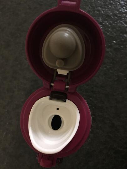 膳魔师(THERMOS) 保温杯 女水杯时尚真空杯子可车载茶水杯定制刻字印logo DPL 紫咖啡 500ML 晒单图