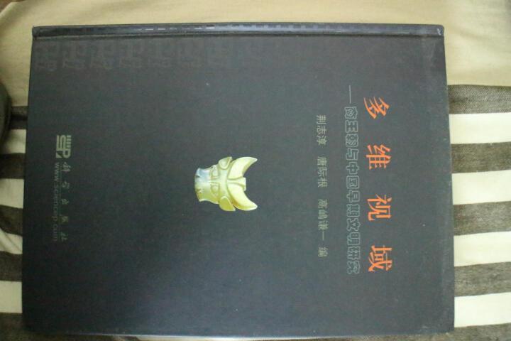 多维视域:商王朝与中国早期文明研究 晒单图