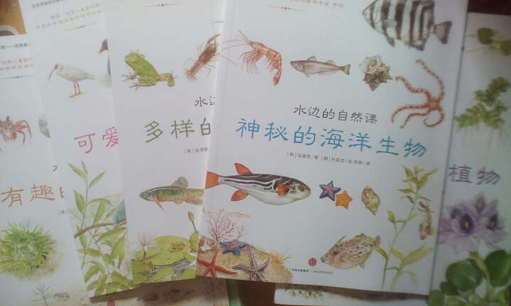 水边的自然课 曼妙的水生植物 晒单图