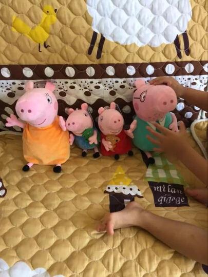 小猪佩奇 正版毛绒玩具佩琪猪公仔粉红猪布娃娃乔治猪儿童沙发抱枕宝宝安抚玩偶生日礼物 一家四口 大号套装(30厘米孩子+46厘米长辈) 晒单图