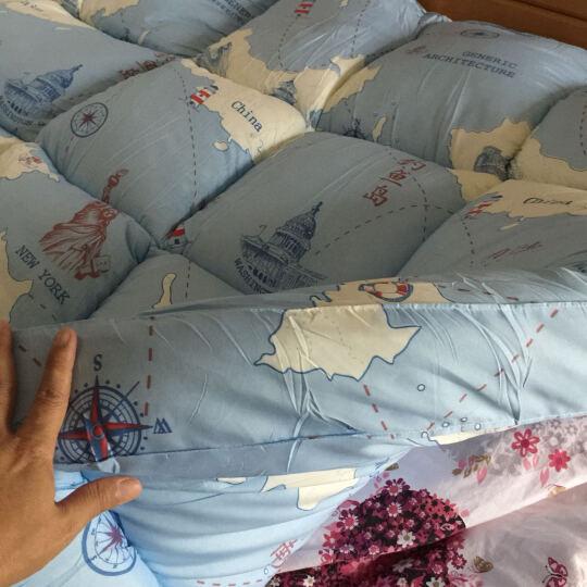 雅鹿家纺 乳胶床垫 床褥1.8米榻榻米床褥子 加厚柔软 单双人学生垫被 灰色羽毛【10cm厚】 120*200cm 晒单图