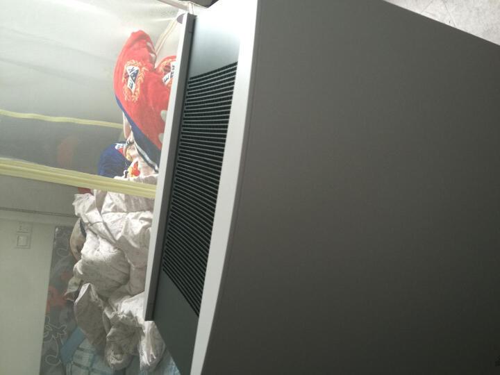 布鲁雅尔(Blueair) 空气净化器450E/650E/680i/ProXL家用除雾霾 650E hepa日版特惠到手价3950 晒单图