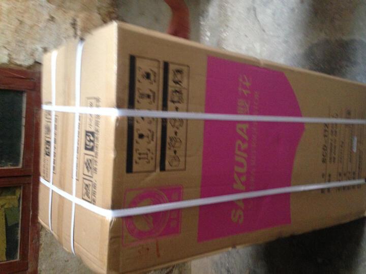 樱花(SAKURA) BCD-66 双门 迷你小冰箱 家用冷藏冷冻小型电 晒单图