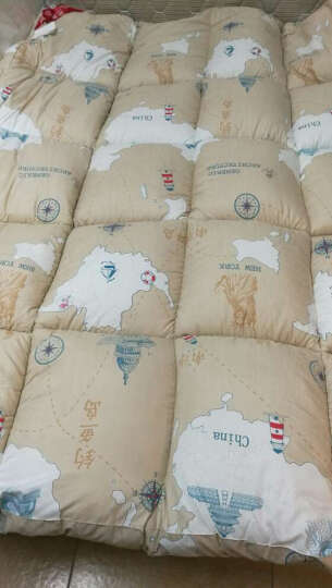 雅鹿家纺 乳胶床垫 床褥1.8米榻榻米床褥子 加厚柔软 单双人学生垫被 水绿色【6cm厚】 150*200cm 晒单图