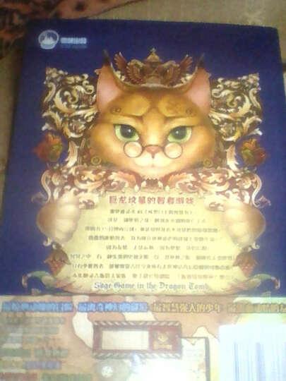 龙与猫之国:巨龙坟墓的智者游戏(3) 晒单图
