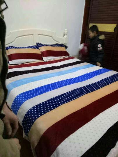 皮尔卡丹 四件套纯棉套件床上用品全棉斜纹印花被罩床单式床品套件 春天的童话-蓝 1.5-1.8米床通用(被套200*230cm) 晒单图